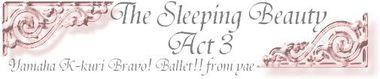 Sleep_act3_3