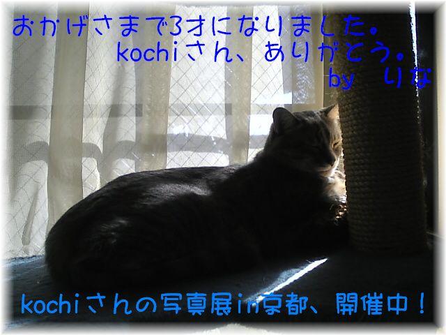 080516_01_1